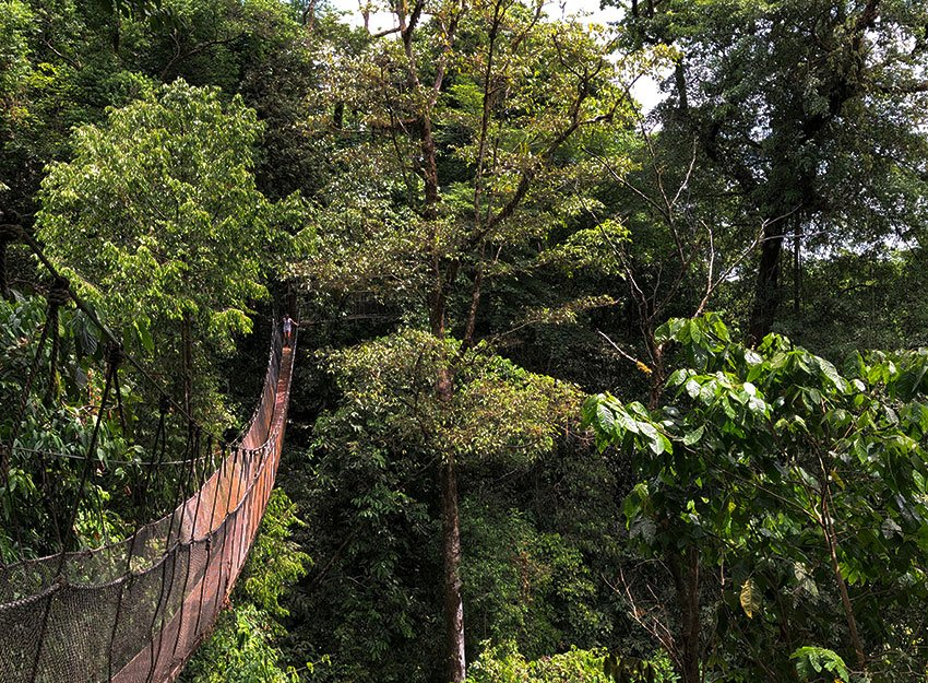 What to do in Manuel Antonio on Monday